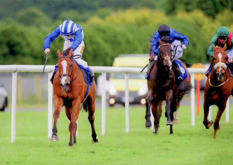 APACHE TROOPER Winning at Roscommon Mon 9th June