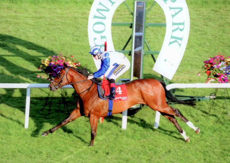 ARTISTIC INTEGRITY winning at Gowran Park July 2014