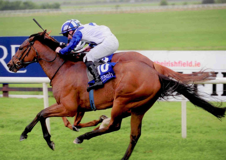 AZURITE winning at The Curragh May 2014