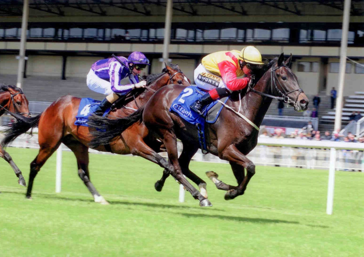 BERTIE LE BELGE winning at the Curragh June 2014