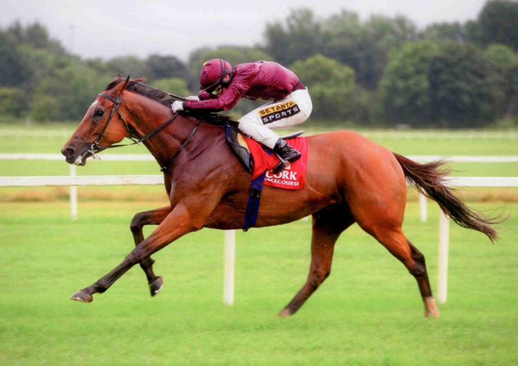 BRENDAN BRACKAN winning his Gr3 at Cork for his new owners, Qatar Racing