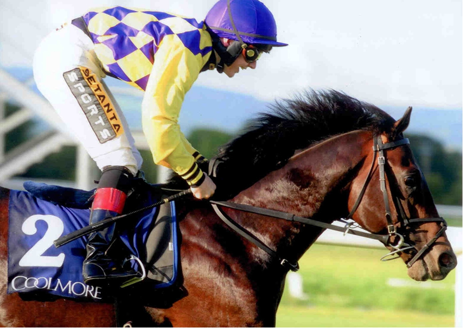 Convergence - Canford Cliffs Stks Listed Tipperary 8th Aug 2014
