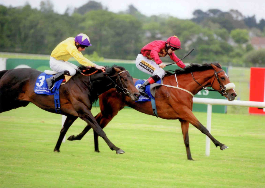 Roheryn - King George V Cup Listed Leopardstown 6th June 2014