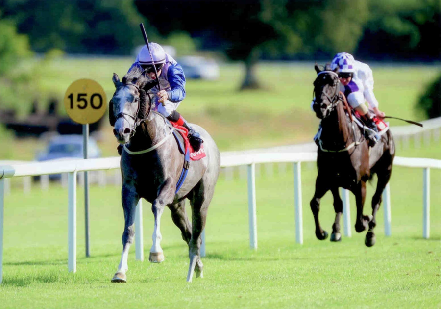 Angel of Joy Gowran Park Tues 1st July