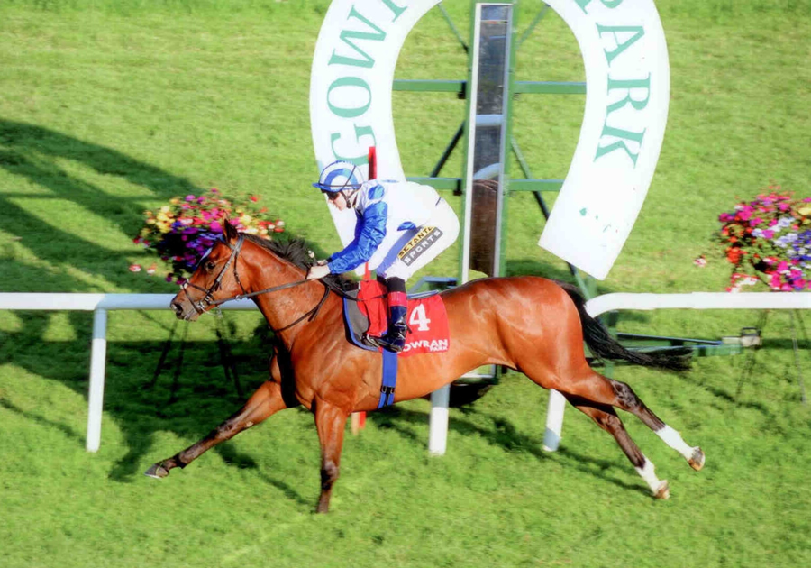 Artistic Integrity Gowran Park Tues 1st July