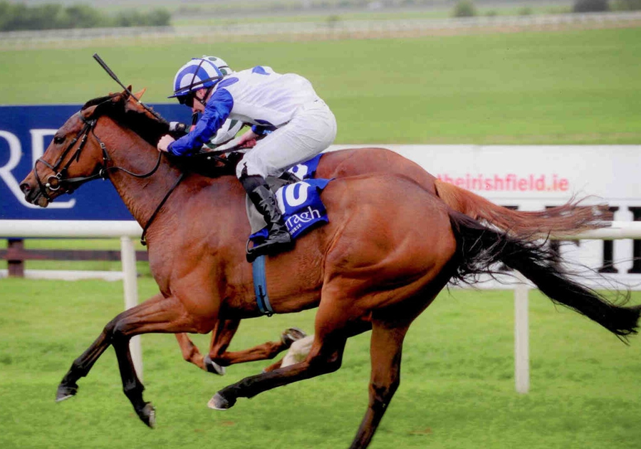 Azurite Curragh Mon 5th May 2014