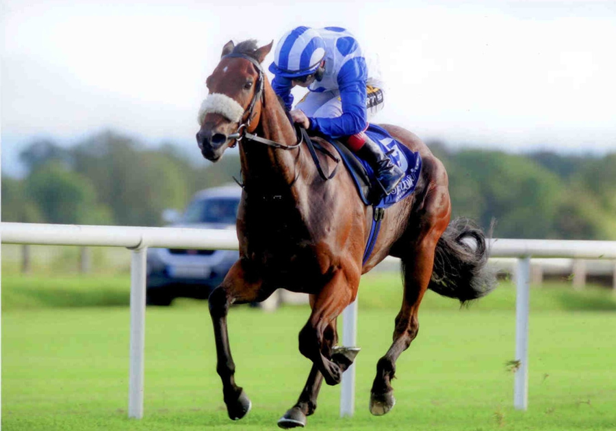 Azurite Fairyhouse 30th Sept