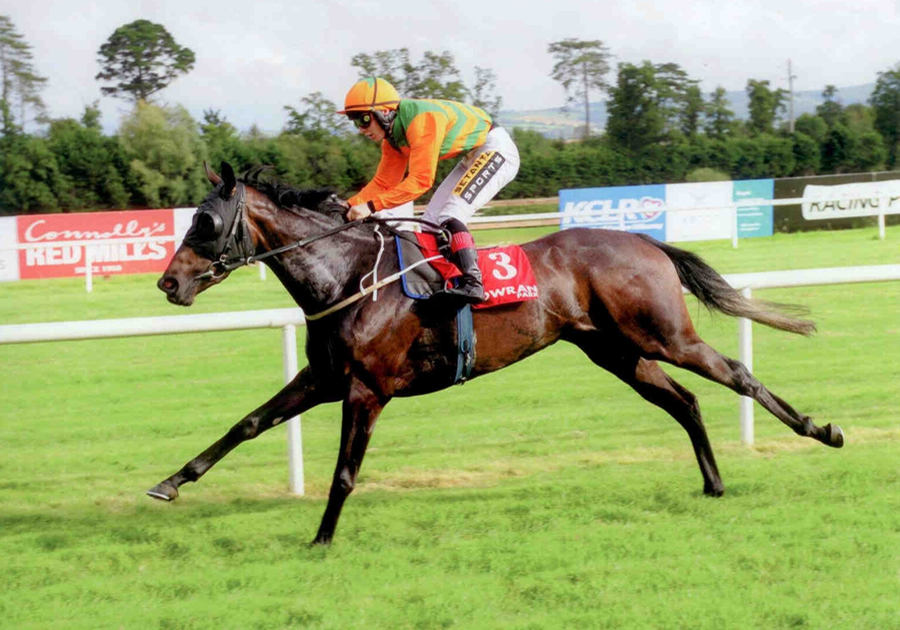 Crafted Mastery Gowran Park Wed 3rd Sept 2014