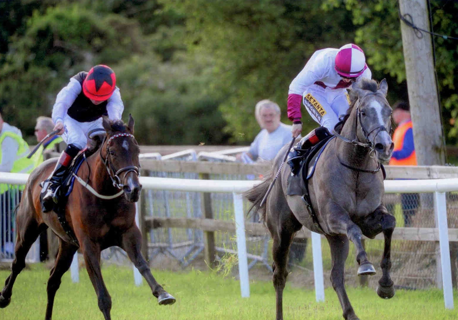 Ice Echo Bellewstown Sat 5th July 2014