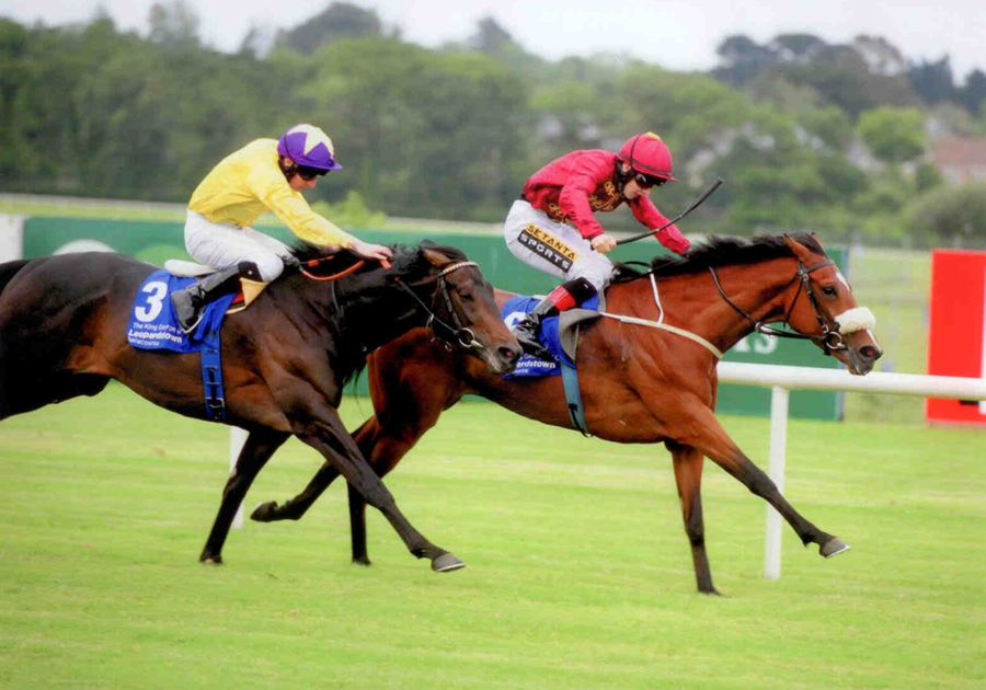 Roheryn Leopardstown 6th June