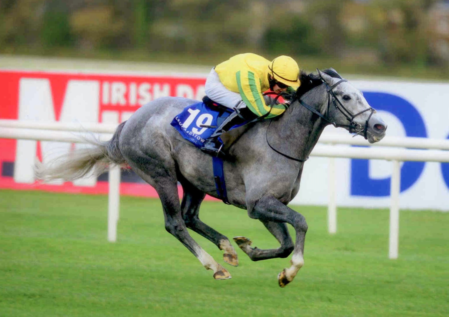 Unsinkable Leopardstown 25th October