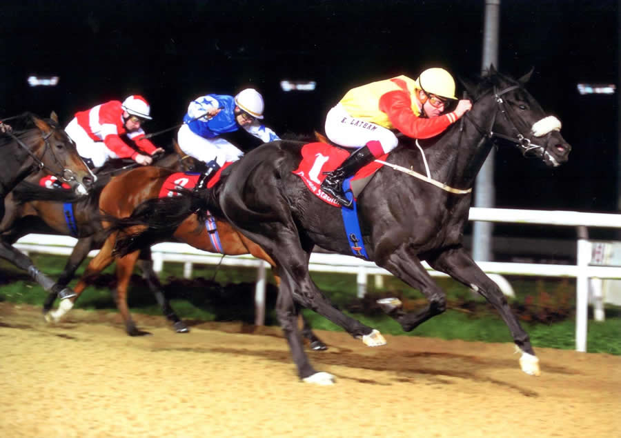 BIBLE BLACK - Star Appeal Stakes Listed Dundalk 7th October
