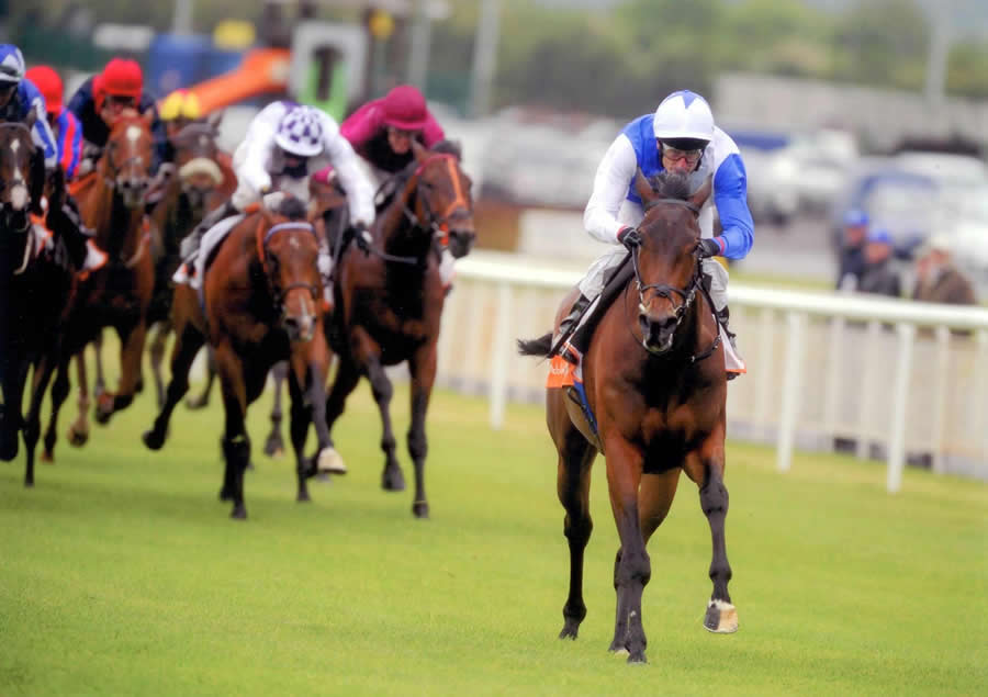 Future Generation winning the Desmond Stakes Gr3 The Curragh 21st May
