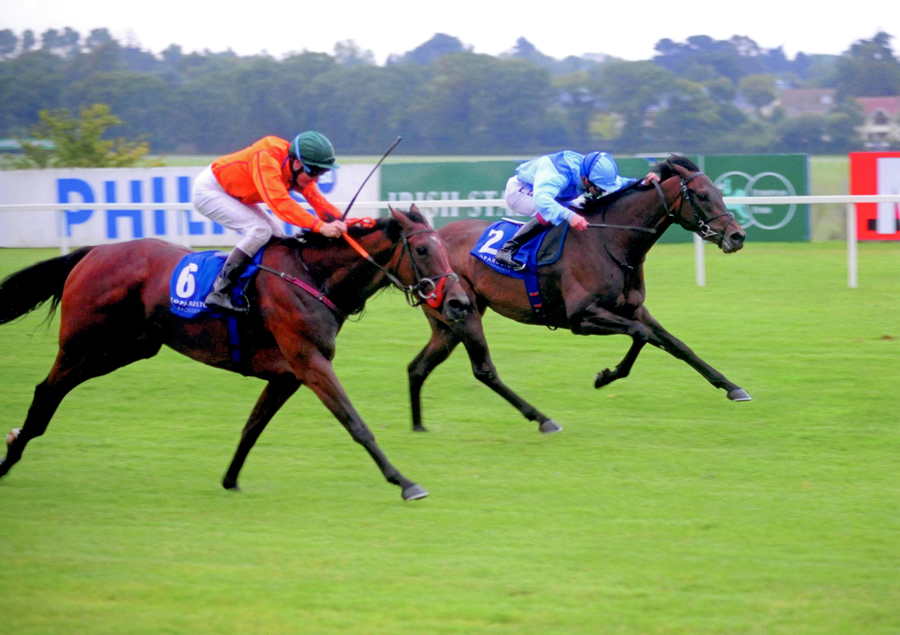 Highly Efficient Leopardstown 21st July 2011