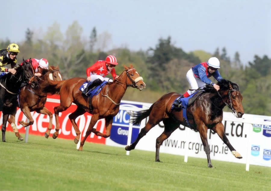 One Up One Down Leopardstown April 10
