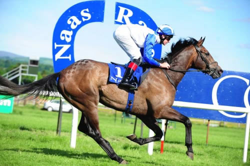 Dark Passion Naas 4th June 2012