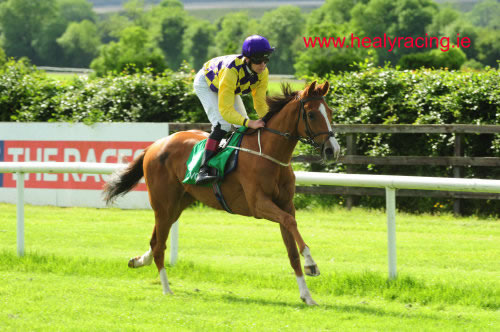 Fluidity Navan 9th June 2012