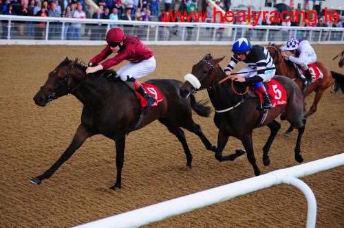 Seeking Luck Dundalk 19th August