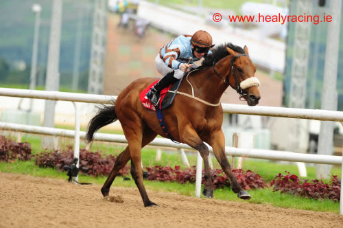 That Boy David Dundalk 16th July 2012