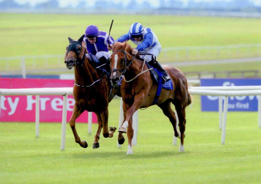 DR FUNKENSTEIN - Winning at The Curragh 28th June 2013