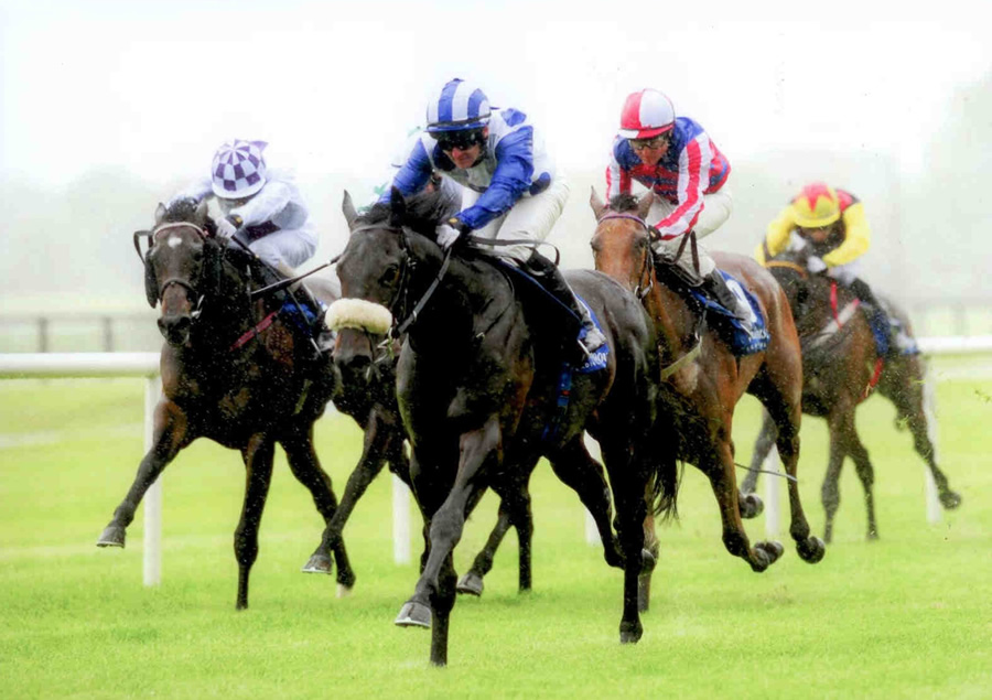 EXOGENESIS - winning his maiden at Fairyhouse 12th June