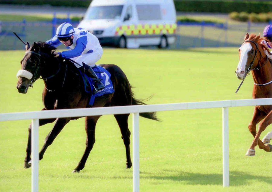 EXOGENESIS - winning at Leopardstown 4th July 2013