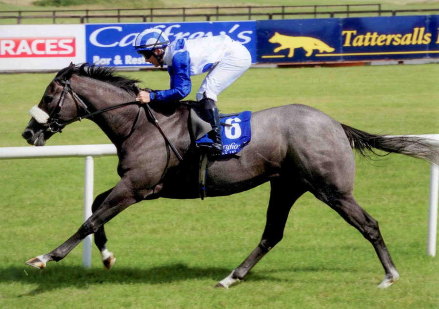 GREEK CANYON - Winning at Fairyhouse 14th July 2013