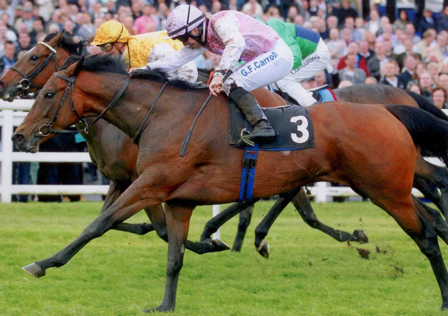 Lily's Angel - Winning the Chartwell Fillies Stks (Gr3) - Lingfield 11th May