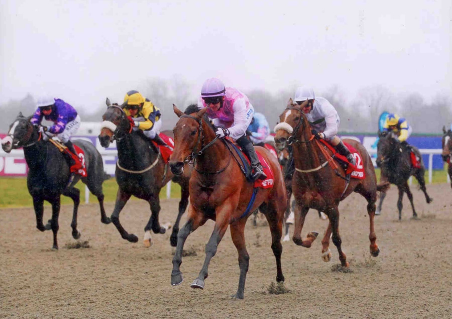LILY'S ANGEL - Snowdrop Fillies Stks (Listed) - Kempton 13th April