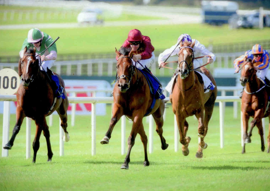 Obliterator The Curragh 14th Sept
