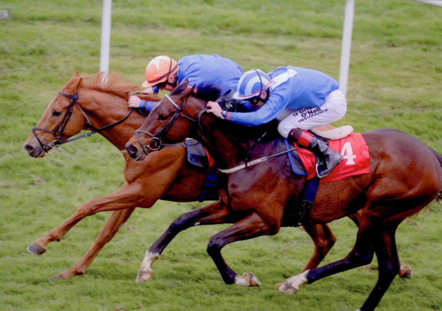 SAFE HOME - winning at Gowran Park 28th April