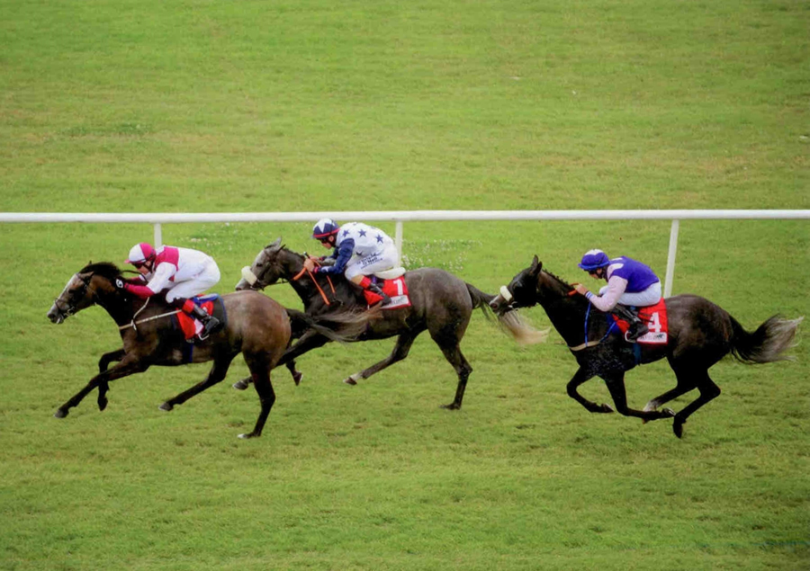 TOCCATA BLUE- Winning at The Curragh 21st July 2013.