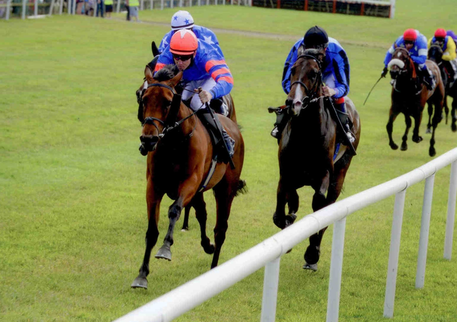 UBIQUITOUS MANTLE - Winning at Bellewstown 6th July 2013