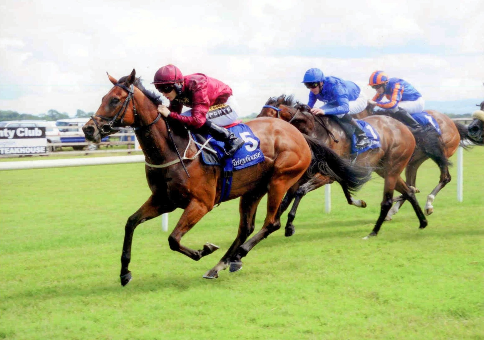 AINIPPE wins the Brownstown Stakes (Listed) at Fairyhouse on July 5th 2015