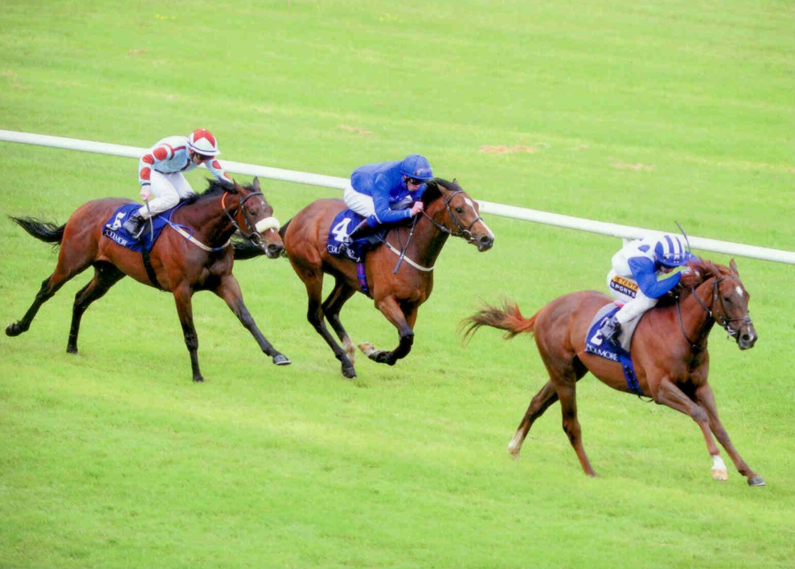 ARGENTERO - winning the Rochestown Stakes Listed Naas on June 1st 2015