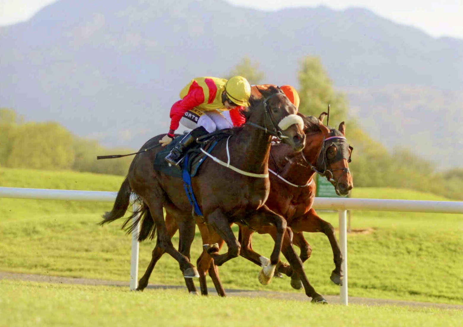 BERTIE LE BELGE starts his 3yo campaign off with a win at Killarney on May 12th 2015