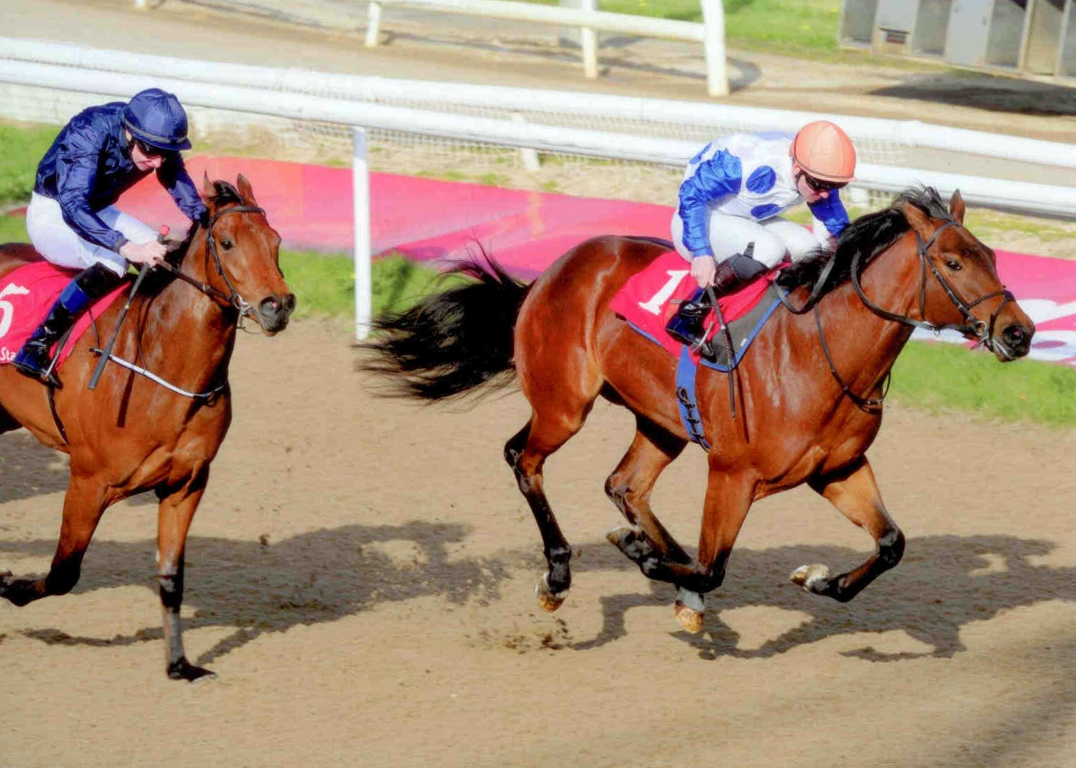 BLOOD MOON provides us with our first 2yo winner of 2015 at Dundalk on Friday 17th April