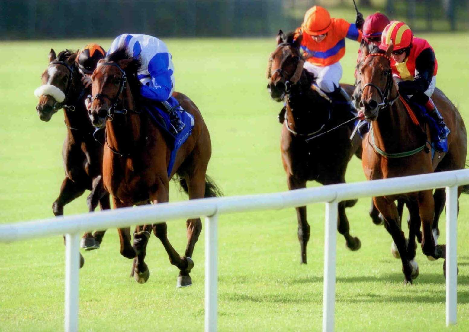 CAPE WOLFE makes it two in a row at Leopardstown on Thursday 18th June 2015