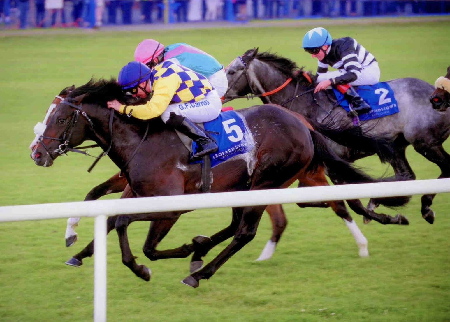 CONVERGENCE wins the Ballycorus Stakes (G3) at Leopardstown on June 18th 2015