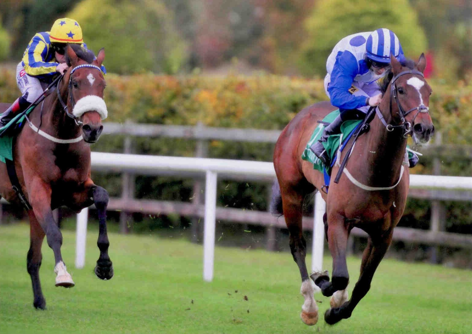 DINOZZO wins first time out at Navan on October 21st 2015