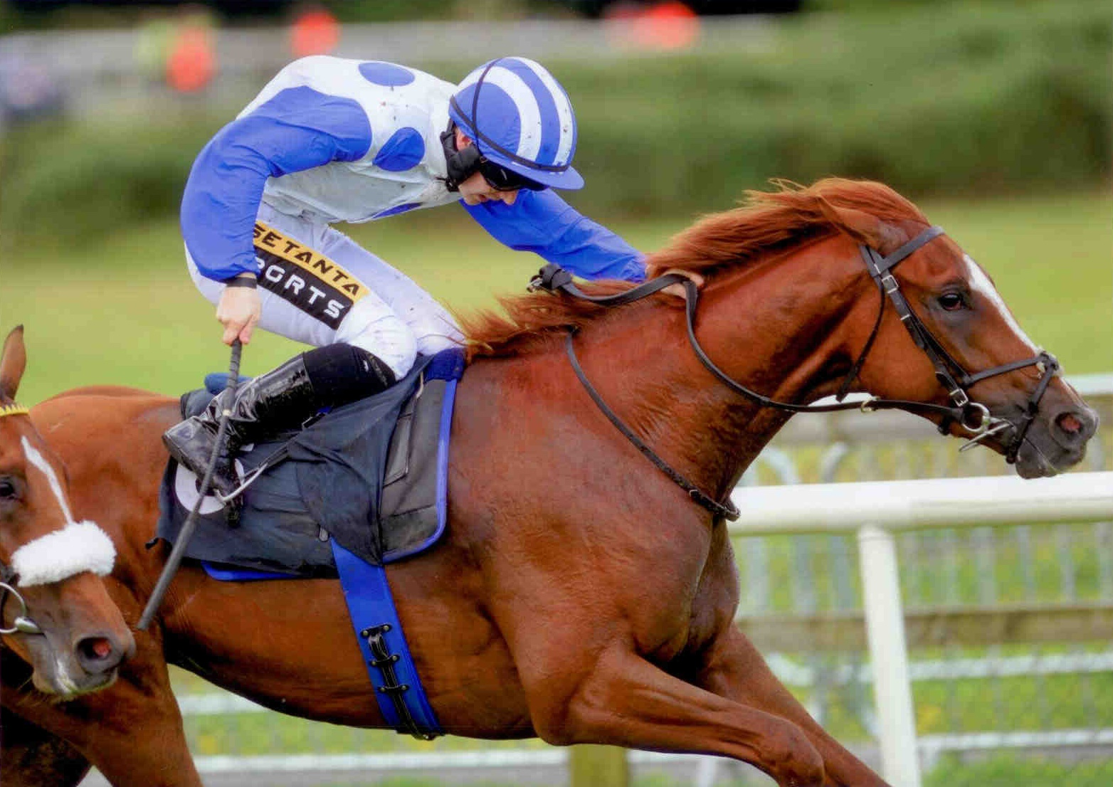 MINT CHAI gets the ball rolling at Bellewstown on August 26th 2015
