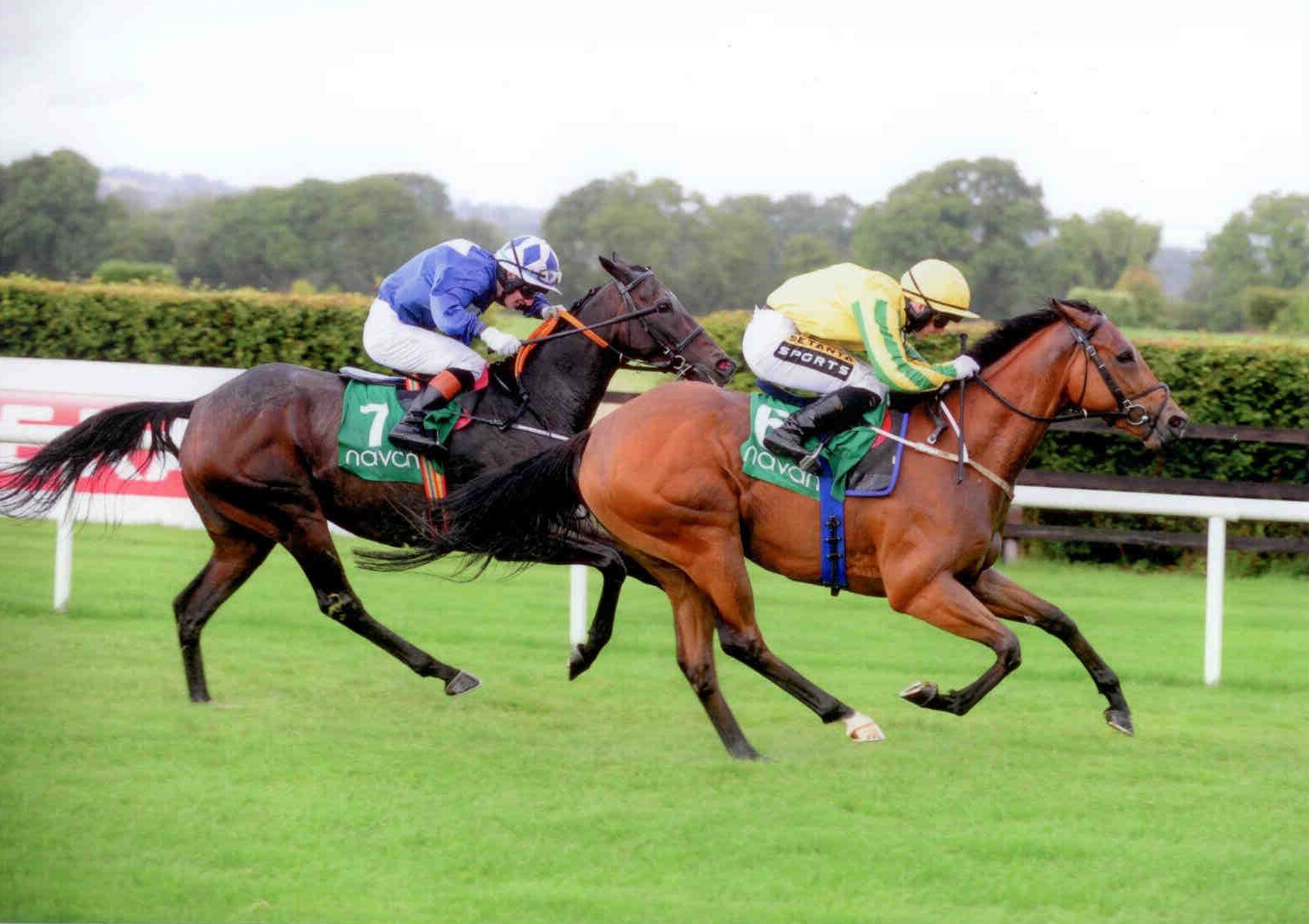 NINGXAI gets the head infront at Navan on September 21st 2015