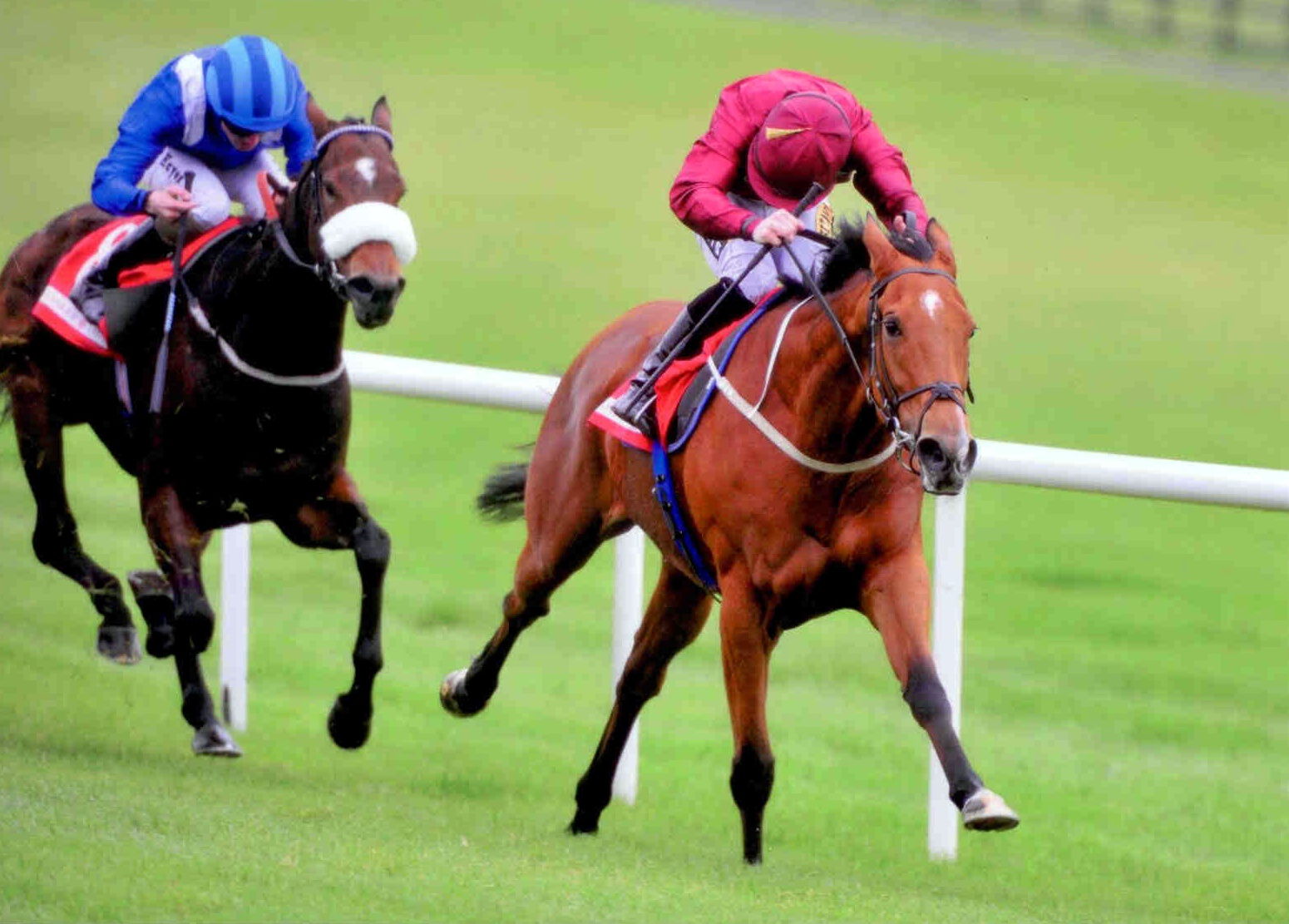 QUEEN CATRINE wins the Garnet Stakes (Listed) at Naas on October 18th 2015 under Colin Keane