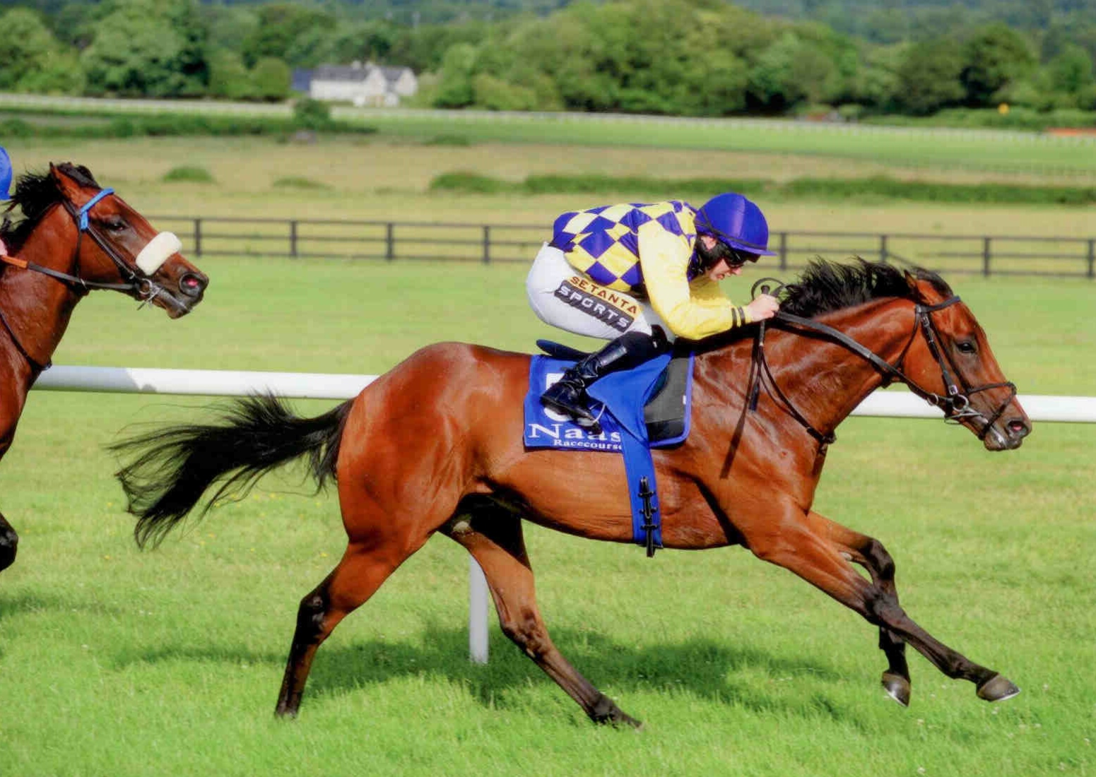 RECKLESS ENDEAVOUR breaks his maiden at Naas on July 8th, 2015