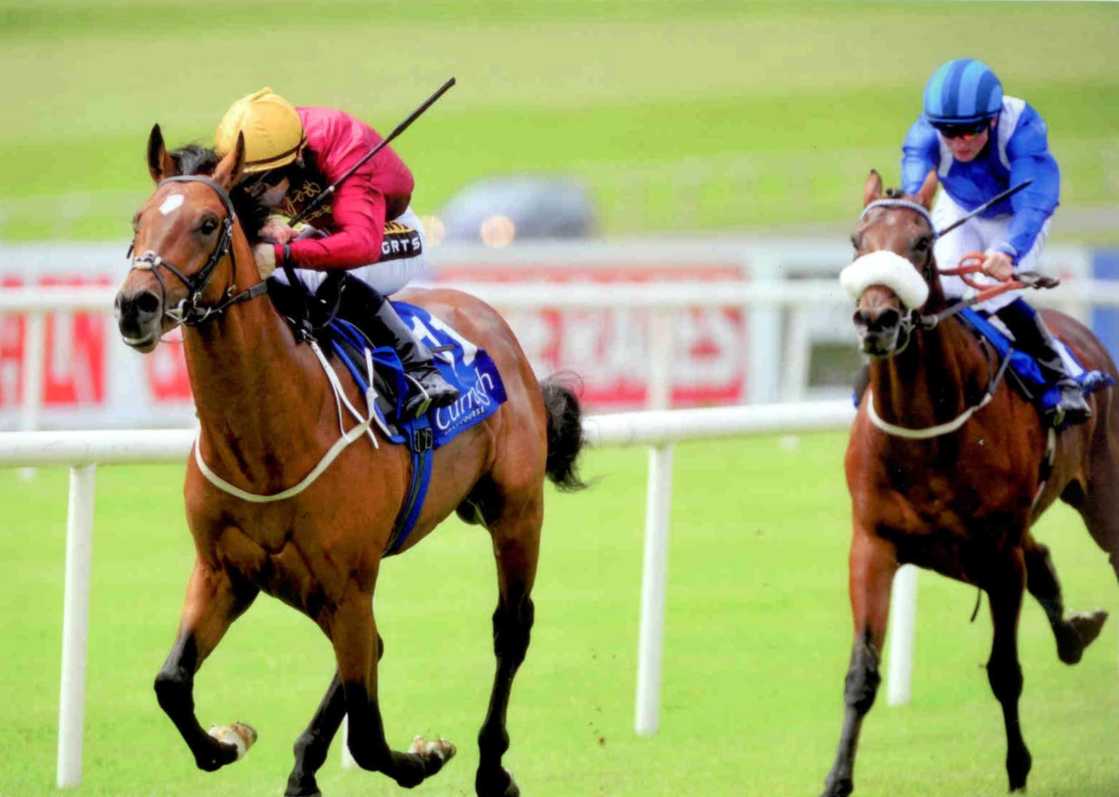 RESTIVE wins the competitive Anglesey Lodge Equine Hospital Maiden at the Curragh 9th Aug 2015