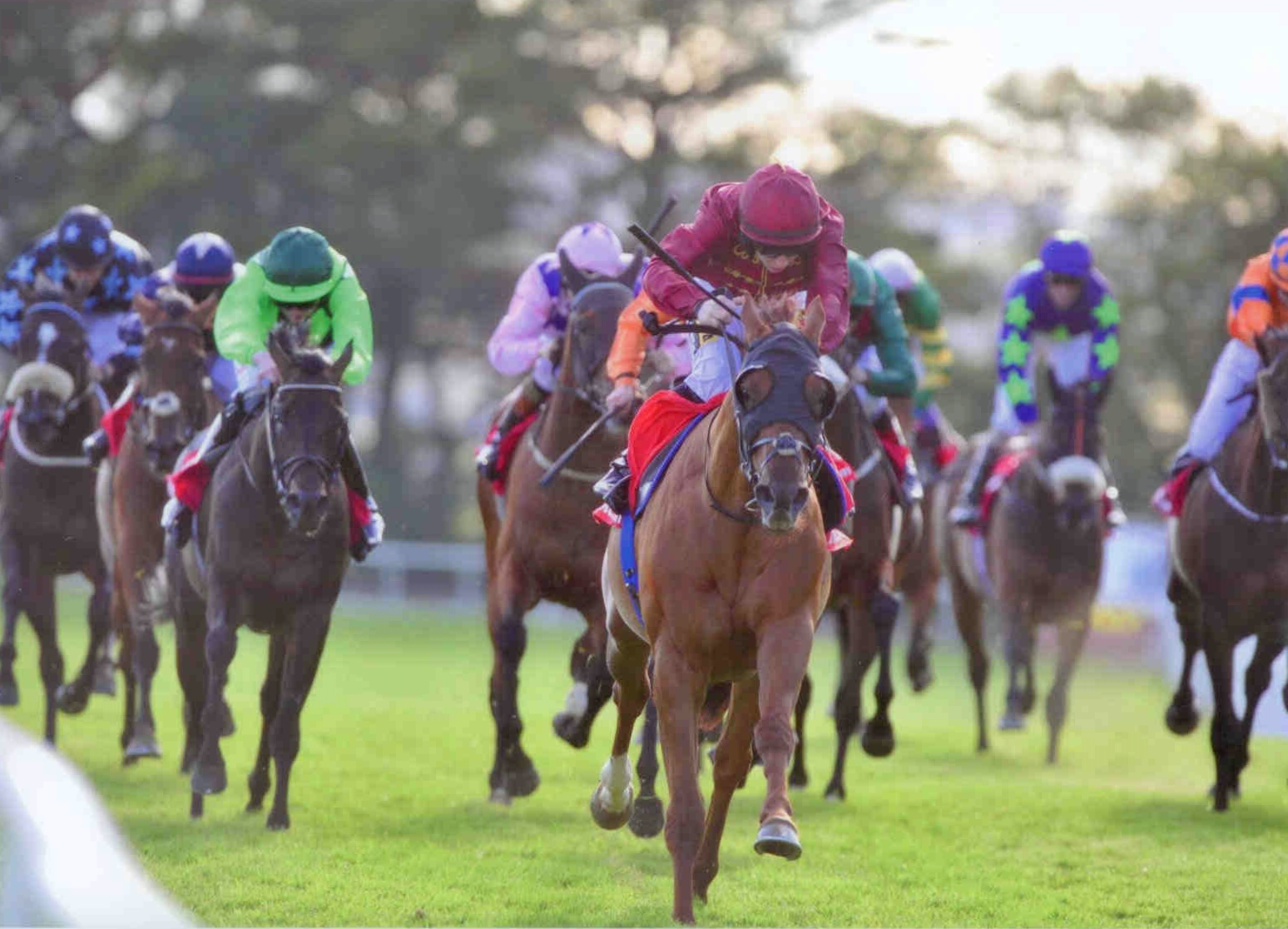 SACRIFICIAL winning at Galway on July 29th, 2015