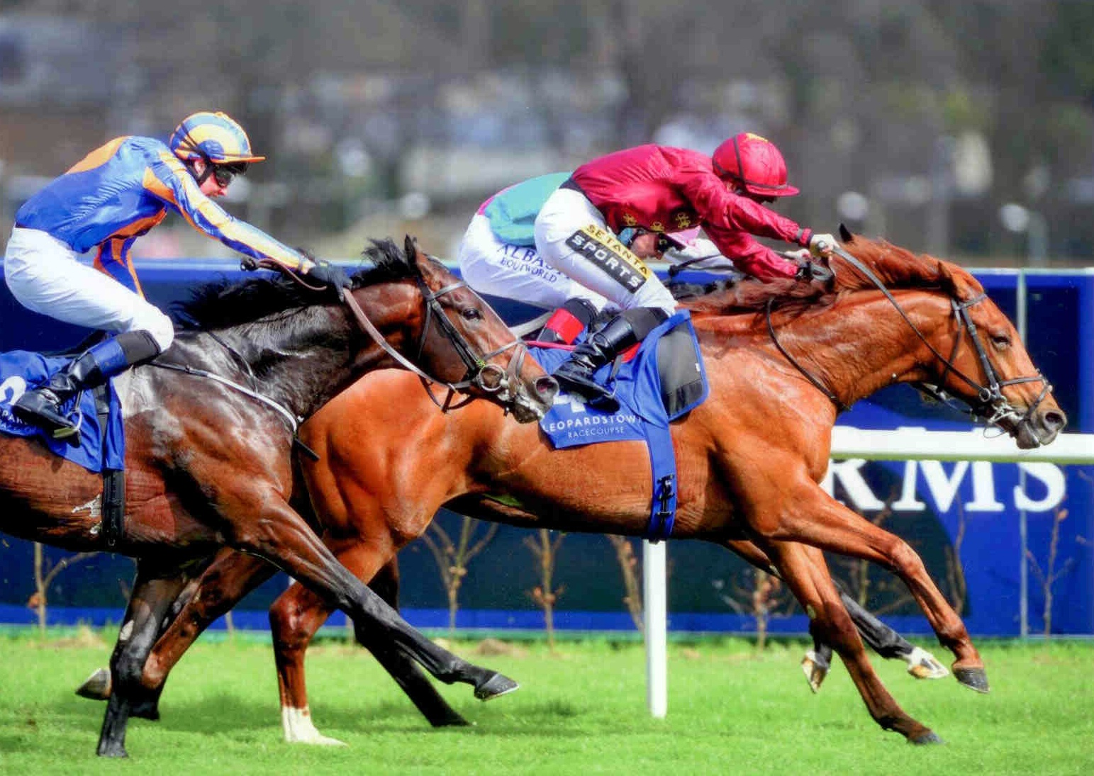 SACRIFICIAL winning at Leopardstown on April 15th 2015