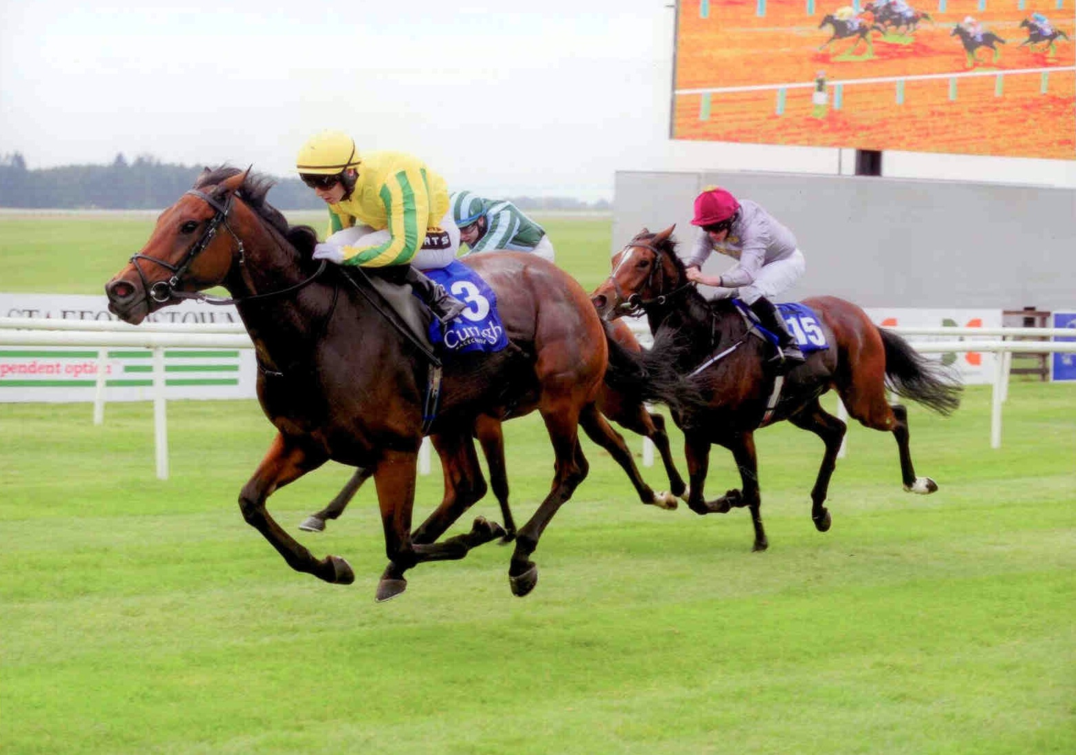 SYNOPSIS wins first time out for new connections at the Curragh on Sunday 11th October 2015