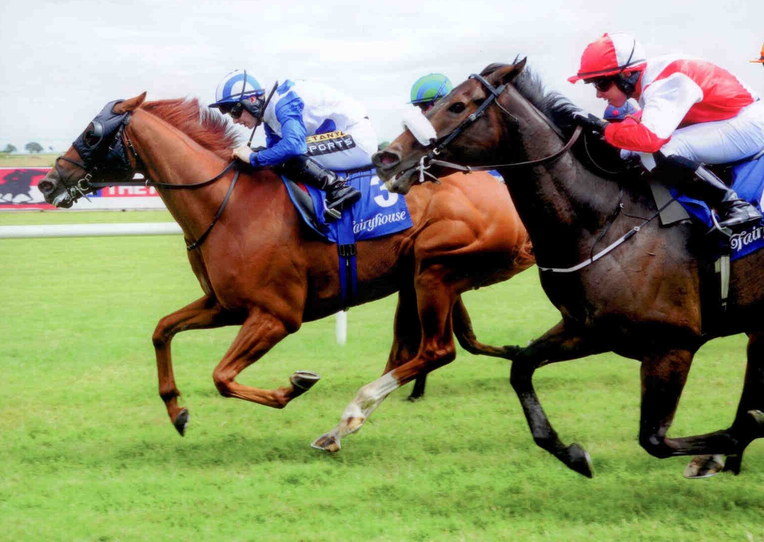 TRINITY FORCE battles back to provide Ger and Colin with a double at Fairyhouse on July 5th, 2015