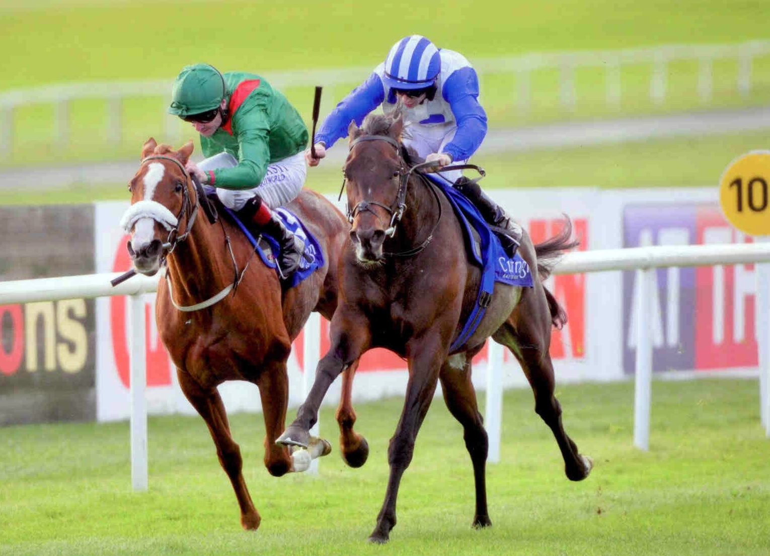 VAN SCHAICK battles back at the Curragh on October 13th 2015